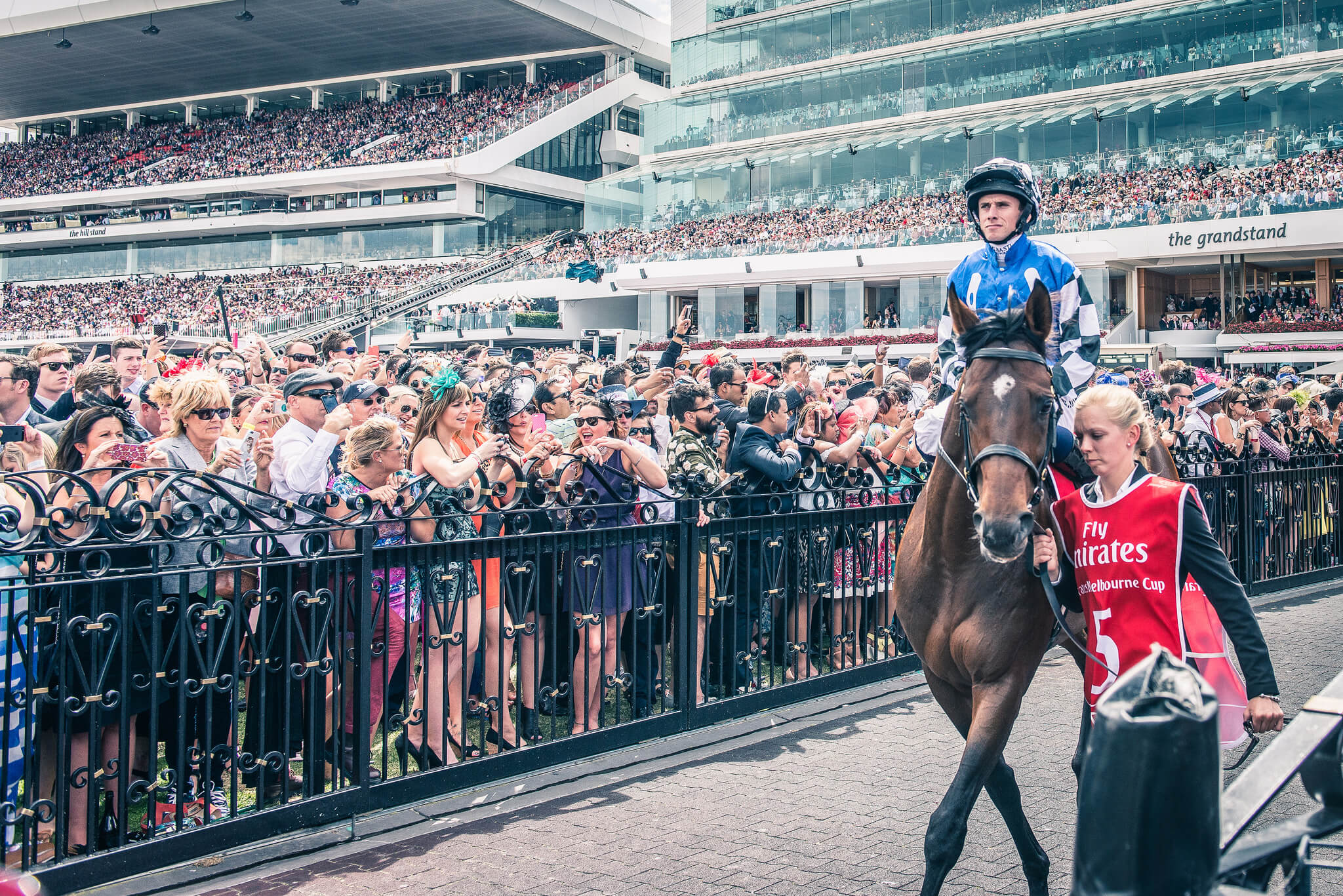 horse-racing-melbourne-cup